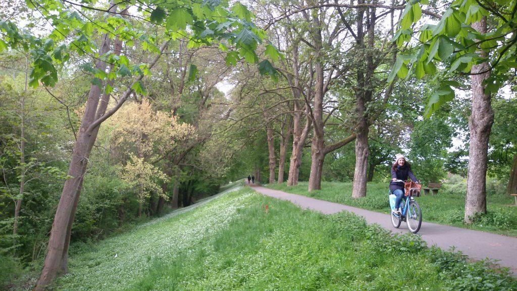 prima bicicletta della storia: nei dintorni di Mannheim dove fu inventata