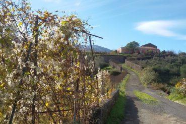L'Etna in bicicletta casa padronale versante nord