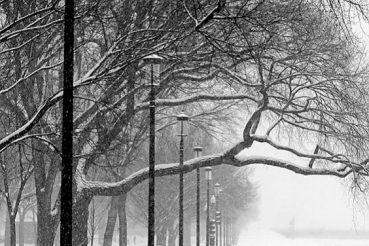 bici nella neve articolo Strava blog Ladra di biciclette Mariateresa Montaruli