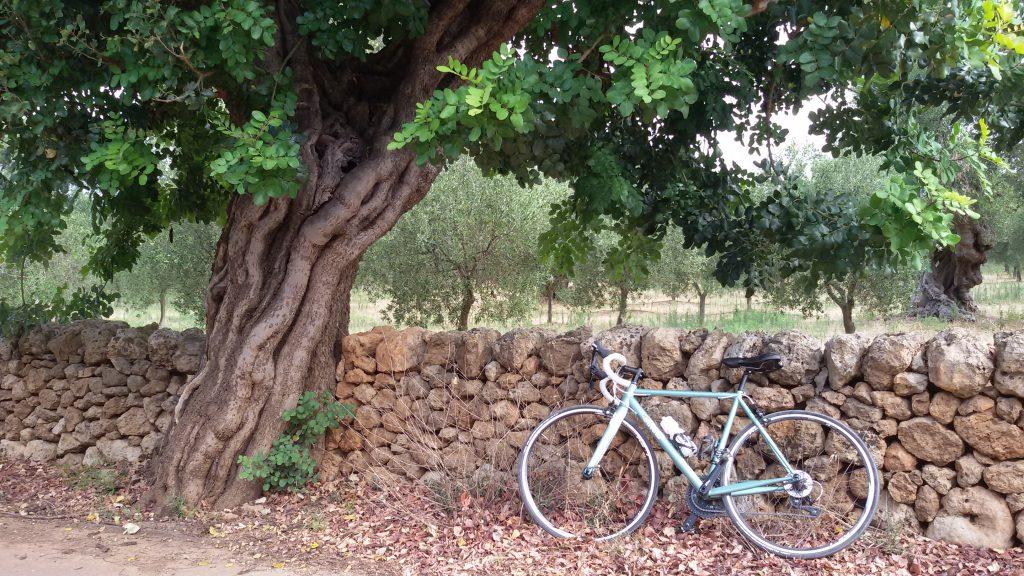 Mariateresa Montaruli, bicicletta Nemo Cinelli per il blog Ladra di biciclette