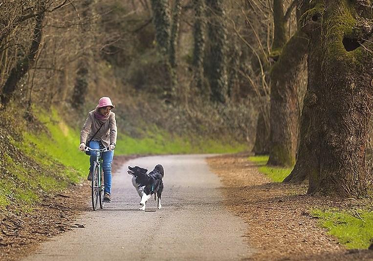 Mariateresa Montaruli autrice del blog Ladra di biciclette con la sua border collie