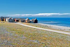 articoli Mariateresa Montaruli: spiaggia di Gotland destinazione silenzio