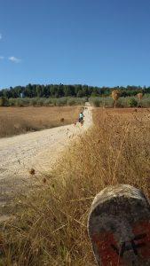 via francigena in bicicletta campagna Monteriggioni