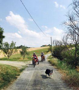 la border collie Laya con le biciclette sul preappennino parmense