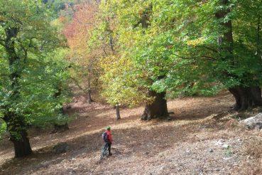 Parco Foreste Casentinesi in bicicletta