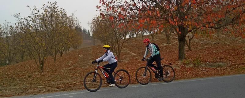 Langhe in bicicletta ladradibiciclette.it