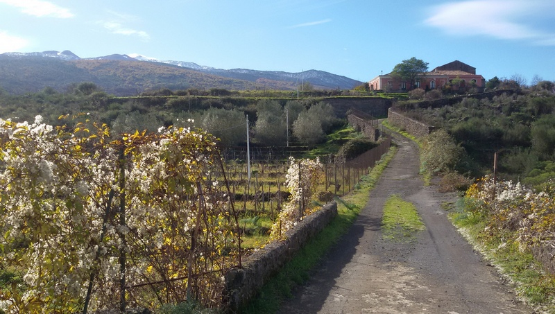 training camp casa sotto Etna