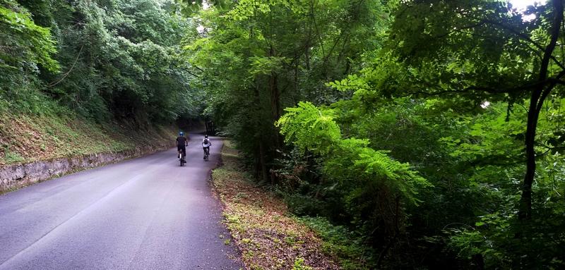 La Panoramica dal confine con la Slovenia nei fitti boschi