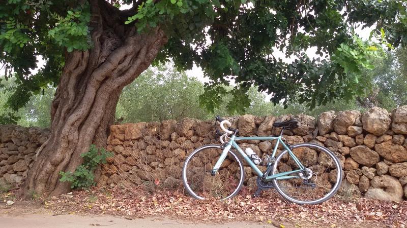 La mia bicicletta di acciaio Nemo Tig di Cinelli