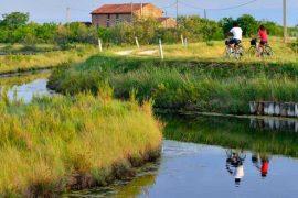 Laguna di Venezia in bicicletta. itinerario cicloturistico a Cavallino Treporti
