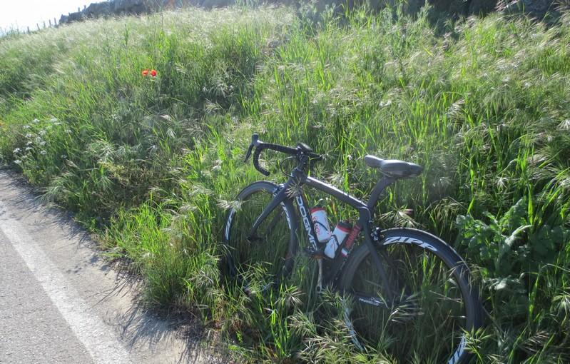 pinarello bici mariateresa montaruli ladradibiciclette.it