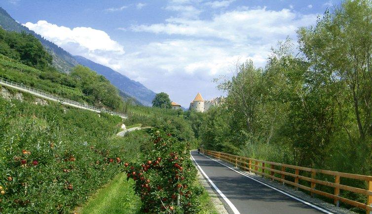 ciclabile della Val Venosta