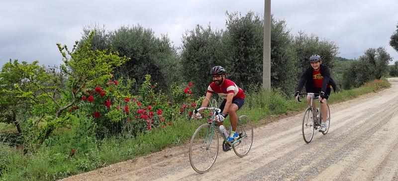 strada bianca percorso Eroica Montalcino con rose