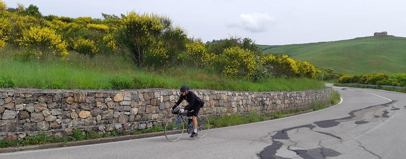 Eroica Montalcino percorso con ginestre