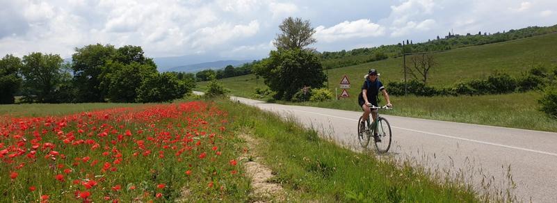 Mariateresa Montaruli in bici lungo un campo di papaveri in Val d'Orcia