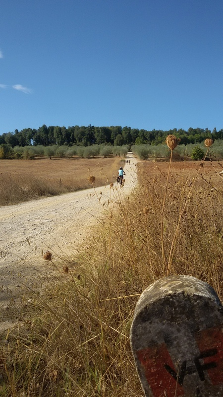 in bici sulla Via Francigena toscana Monteriggioni