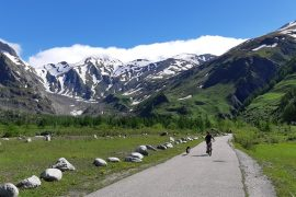 mtb con border collie in Val Ferret, Courmayeur