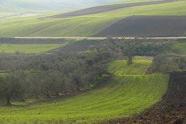 alta murgia in bicicletta, tra Puglia e Basilicata
