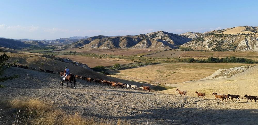 pastore a cavallo nei calanchi lucani