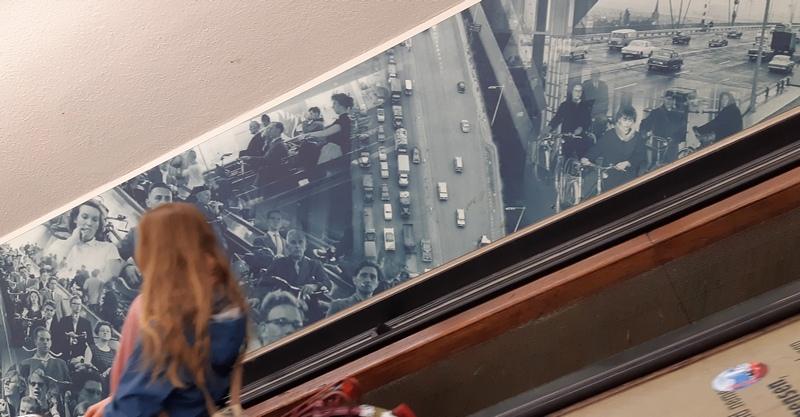 Rotterdam in bicicletta, scale mobili e tunnel ciclabile