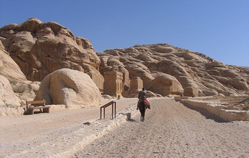 cavallo a Petra in Giordania ph Mariateresa Montaruli