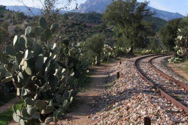 trenino verde di sardegna vicino Laconi