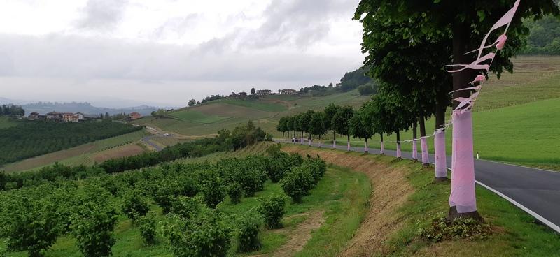guarene strada giro italia 2021